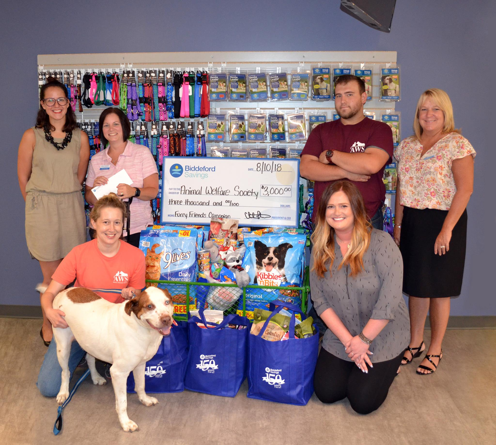 Biddeford Savings employees visit Animal Welfare Society to present a big check and pet food collected during their annual Furry Friends campaign